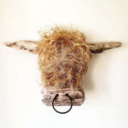 Highland Cow Scottish Gift